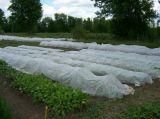6.4m Polipropilene 농업 부직포 직물