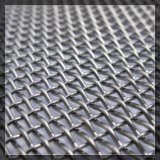 Ячеистая сеть нержавеющей стали обыкновенного толком Weave свободно образца сплетенная