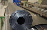Pellicola bassa/ad alta densità di vendita calda del PE/strato nero dell'HDPE