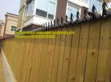Против подниматься стены ограды с остроконечными зубьями всплесков на линейке, стены и двери