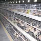 成長する肉焼き器および若めんどりのための電流を通された自動鶏のケージ