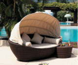 Роскошный пляжный/бассейн плетеной лежаками для загара (SL-07012)