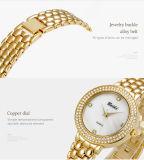 Belbiの女性贅沢な腕時計の方法あなたのための最上質の女性のステンレス鋼の腕時計の金そして銀を製造している簡単な野生の水晶腕時計の日本PC21動きOEM