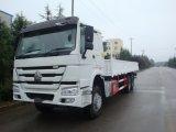 Camion del carico delle rotelle 6X4 di Sinotruk HOWO 10