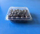 125 그램 들쭉 포장 콘테이너 플라스틱 음식 급료 애완 동물 과일 포장 상자 FDA 제안