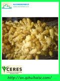 Хорошее качество нетронутой пухлыми чистый желтый цвет китайский свежего имбиря