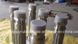 Montaggi femminili maschii delle flange montati con il tubo flessibile del metallo flessibile