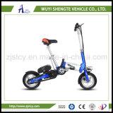 12pulgadas equilibrio Auto Scooter eléctrico de 2 ruedas