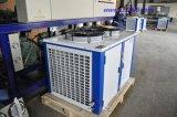 Unità di condensazione di temperatura della stanza di verdure normale di conservazione frigorifera