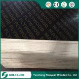Resistente a la alta humedad encofrado encofrado de hormigón de grado marino Film enfrenta la madera contrachapada