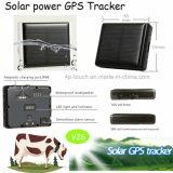 Traqueur animal de GPS avec le remplissage d'énergie solaire (V26)