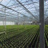 3.2mm Sonnenkollektor-Glas für Gewächshaus