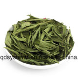 Stevia-Großhandelspreise/organischer Stevia-/Massereiner Stevia-Auszug