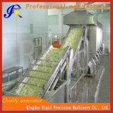 Las frutas y hortalizas de la máquina de secado Dewagering Pepino botella