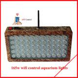 Illuminazione di vendita calda della pianta del LED con il Ce & RoHS