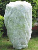 Tessuto non tessuto Anti-UV dei pp Spunbond per il coperchio agricolo