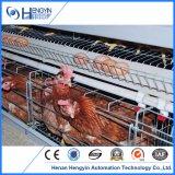 Jaula galvanizada caliente de la capa del pollo del huevo del equipo de las aves de corral