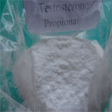 High Purity Muscle Gain Steroids Testosterone Propionate Half Life CAS 57-85-2
