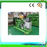 De Generator 300kw van de Motor van het Biogas van het Afval van het Landbouwbedrijf van de Mest van het vee