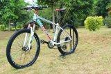 Dbx New Fashion Adult Vanquish Alloy Alike Bike