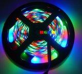 Kit RGB della striscia del LED con il pacchetto della casella di colore