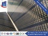 1220*2440mm película marrom confrontados Huachang Plwood do fabrico de contraplacado