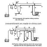 パイプラインの固定タイプの販売のための牛搾り出す機械