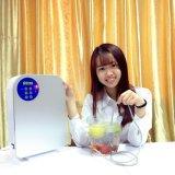 De Generator van het Ozon van de Desinfectie van de Machine van de Behandeling van het Water van de Groente van het fruit van HK-a1