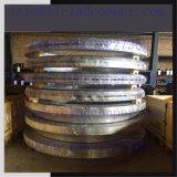 Flange de Aço Inoxidável forjado/ Forjados Flanges de titânio