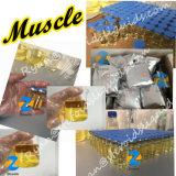 Pó esteróide Andarine S4 da pureza elevada de Sarms para o desperdício do músculo