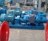 Pompe de pétrole jumelle horizontale de pompe de vis