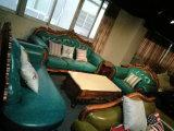 Neues klassisches königliches Art-Gewebe-Sofa für Hauptmöbel (168-5)