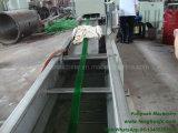 Wir stellen das Haustier zur Verfügung, das Riemen-Produktionszweig gurtet