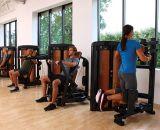 lifefitness, máquina de la fuerza del martillo, equipo de la gimnasia, aumento lateral DF-9004