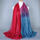 Écharpe mince de estampage chaude de polyester de femmes avec la couleur dégradante (H14)