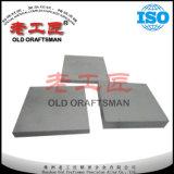 Kundenspezifische Hartmetall-Betrag-Platte für Form