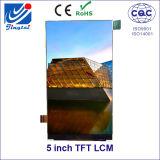 5 modulo 480 (RGB) X854 della visualizzazione dell'affissione a cristalli liquidi di pollice TFT LCM per l'automobile GPS