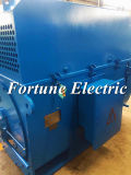 Три фазы 3.3kv индукционный электродвигатель с электроприводом