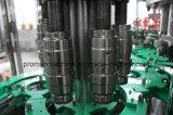 Terminar el jugo que aclara la cadena de producción que capsula de relleno planta