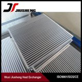 Faisceau en aluminium personnalisé d'échangeur de chaleur d'ailette de plaque de modèle