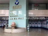 Shanghai-Dieselmotor Sc7h250ca2 für Lieferung