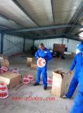 Matériel de volaille pour le poulet avec les carters alimentants et le système potable de raccord