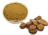 Chinesisches traditionelles Kraut Foti Auszug-Glukosid 2%