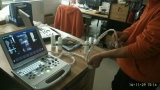 Portable de calidad superior 3D, ultrasonido 4D para el hospital