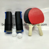 Il rumore metallico portatile Pong Playset con rete, le pale, sfere e trasporta il sacchetto