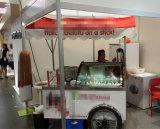 Vara e carros do gelado/congeladores italianos do Showcase de Gelato