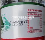 Machine d'impression de machine de codage de datte de la Chine Wuhan avec le GV de la CE