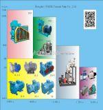 Mini rotative à ailettes d'huile de pompe à vide de fabricant chinois