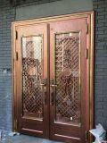 Farben-Edelstahl-Tür (S-3030)