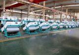 Ultimo sorter high-technology di colore dell'arachide da Anhui Hons+